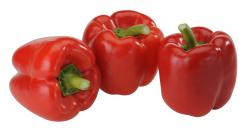Paprika Mix rot - 3 Stück  (500 g) - 8717808991660
