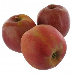 NaturWert Apfel Elstar  - 8008757116441