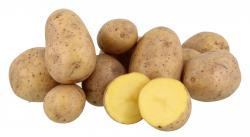 Küstengold Kartoffeln Gala/Soyara  (2,50 kg) - 4260033394903