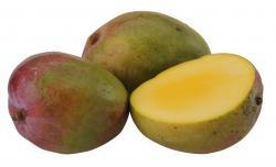 Mango  (1 St.) - 8713807003670