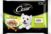 Cesar Feines im Frischebeutel Selektion in Gelee  <nobr>(4 x 100 g)</nobr> - 5900951253577